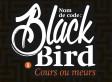 [avis lecture n°1]  Nom de code : BlackBird